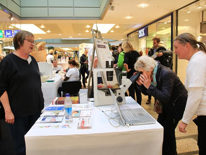 Auch diese Besucherin war vom Blick durchs Mikroskop fasziniert. Foto: Viktoria Kühne